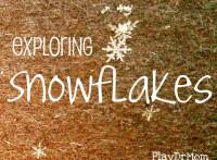 exploring snowflakes