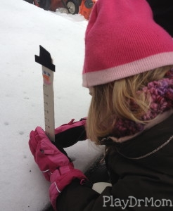 using the snow measurer