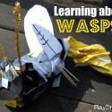 Learning about Wasps