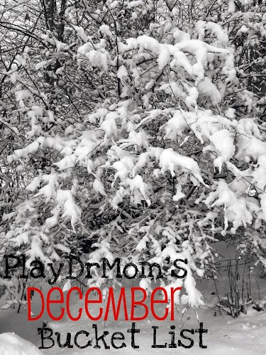 PlayDrMom's December Bucket List