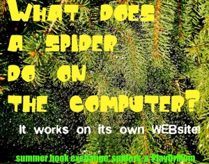 a little bit of spider humor - blogger style!