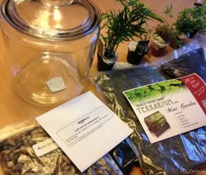 contents of Fairy Garden Terrarium