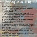 Chazan's Principles of play