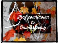 leaf countdown
